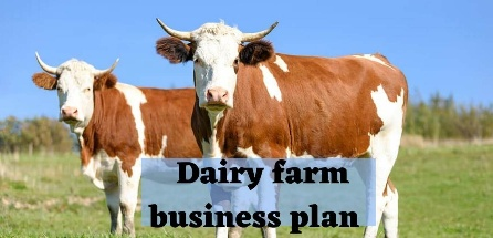 Indian dairy farm business plan in Hindi