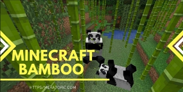 bamboo in Minecraft